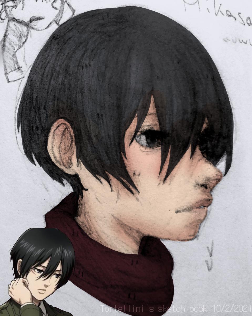 today's Mikasa's birthday uwu🎉 Illust of Tortellini By_Tortellini Happy_birthday Photo Attack_on_Titan Mikasa_Ackerman
