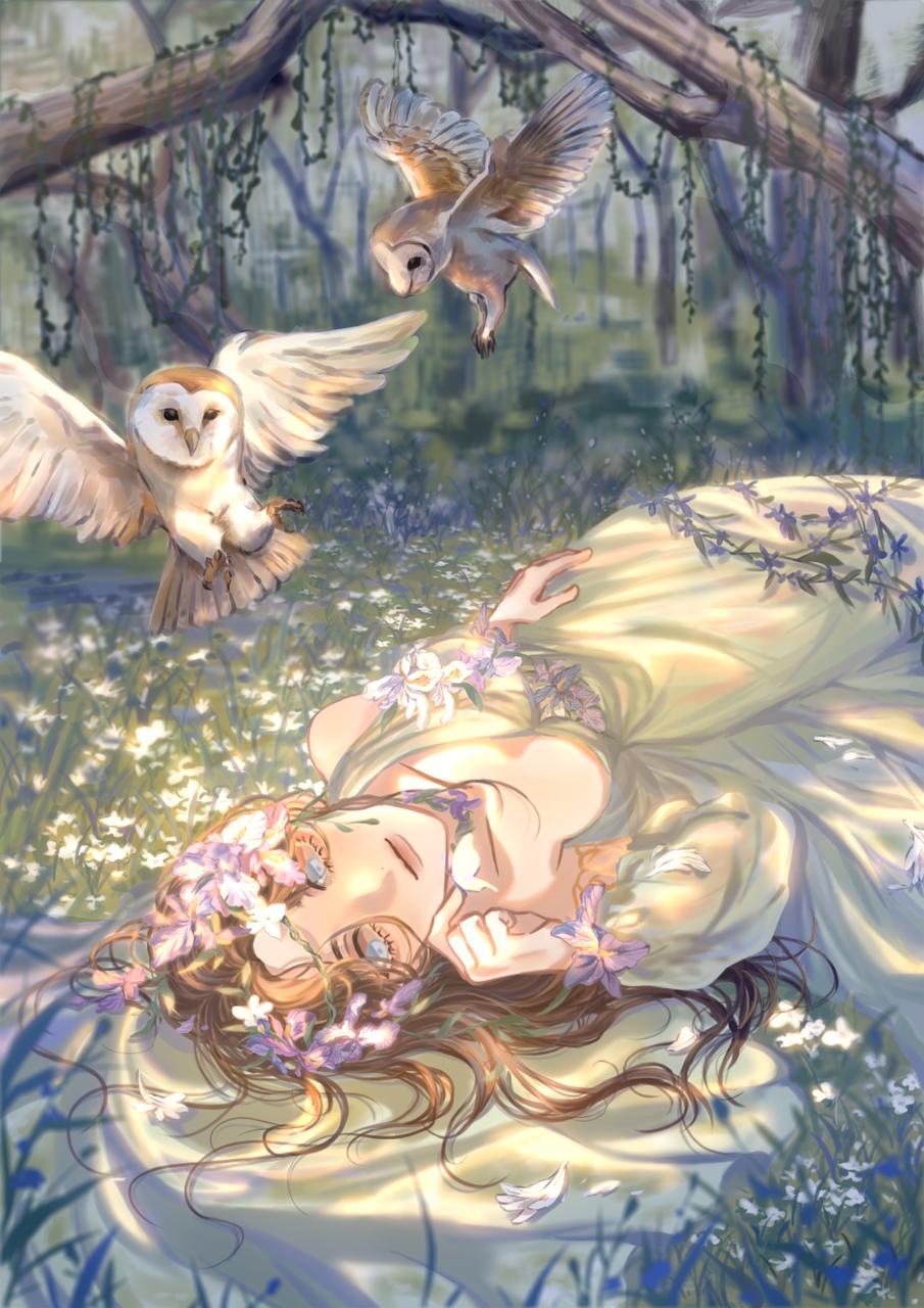 鴞 Illust of 斗幽 February2021_Fantasy