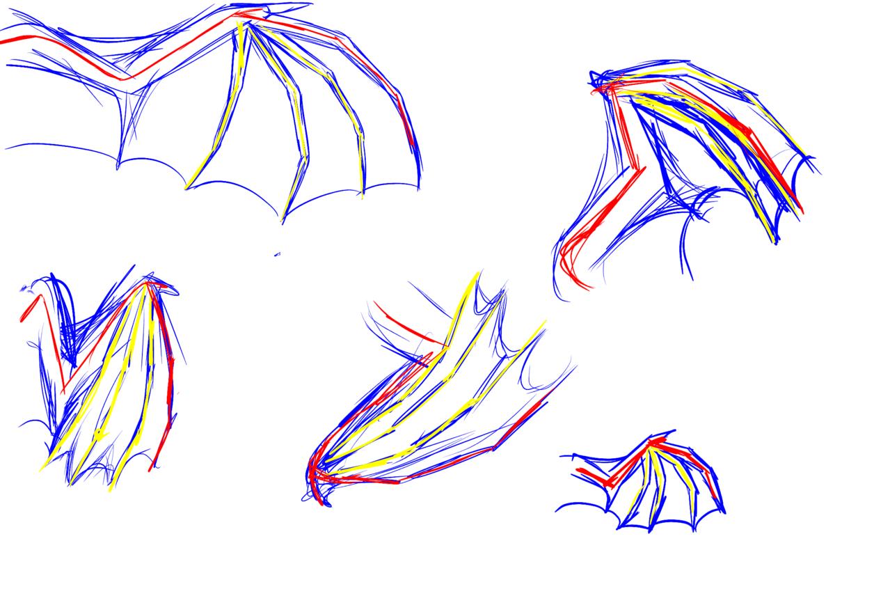 Crappy dragon wing anatomy - FluffyTheMajesticSeaFlapFlap ...