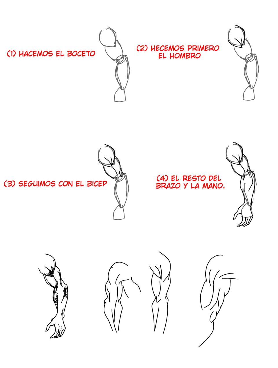 Brazos musculosos