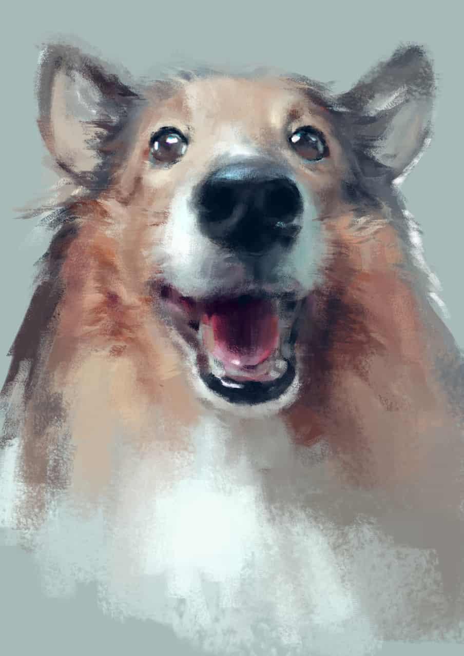 速涂狗狗 Illust of Umekawa dog