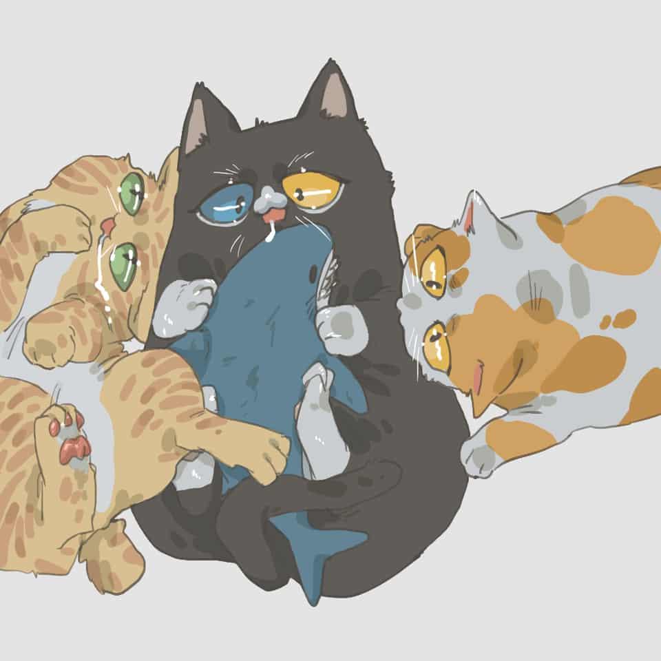 當然是貓派啊(。・ω・。)
