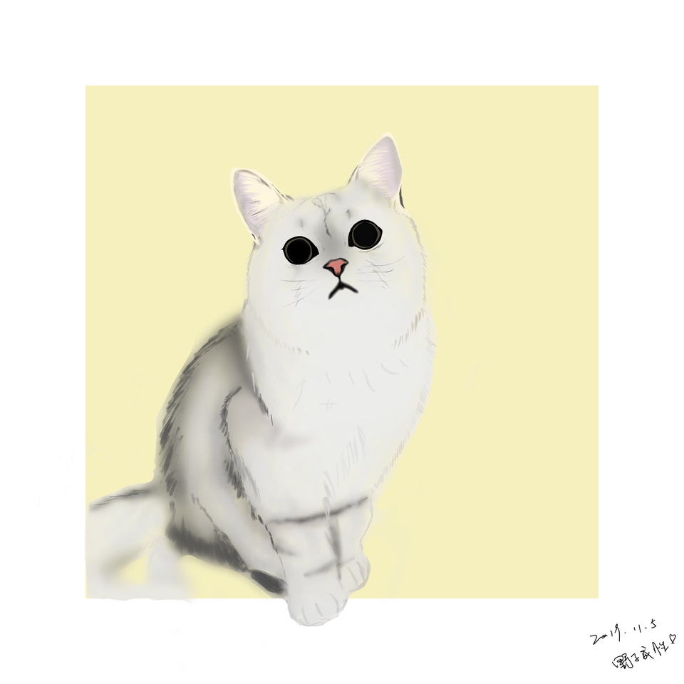 猫咪 Illust of 野子成性 DOGvsCAT_CAT medibangpaint