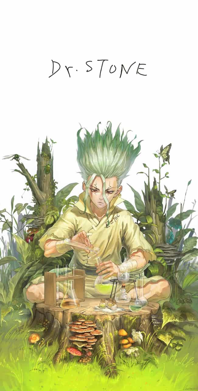 Dr.Stone Illust of Haru 石神千空 fanart Dr.STONE 綺麗 ドクスト