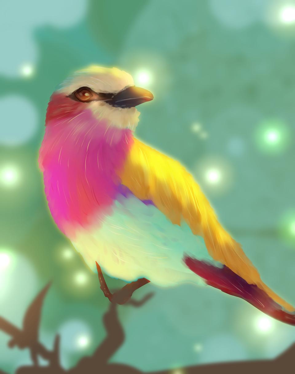 bird theme Illust of snow_yuki medibangpaint 1hDrawingChallenge