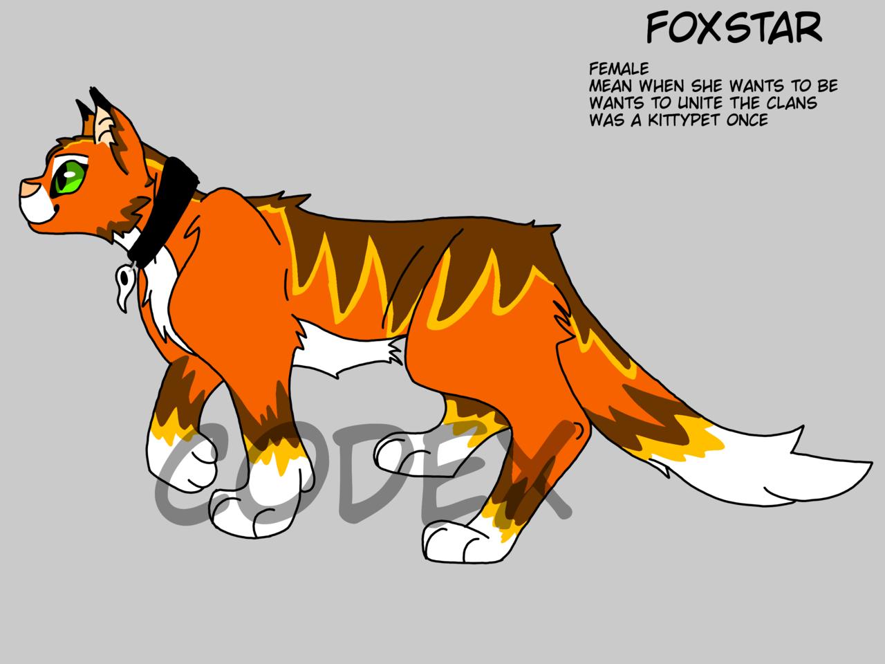 FoxStar! Illust of HeadHonchoCodex medibangpaint oc HeadHonchoCodex cat villain Warriors furry clan fox warriorcats