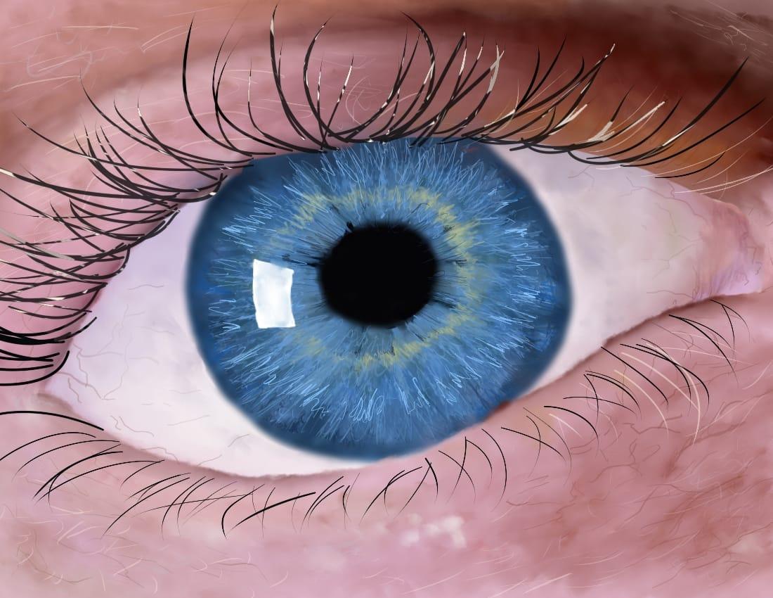 Blue Eye Illust of OneLunarKitty semirealism blue humanbody eyes realistic anatomy