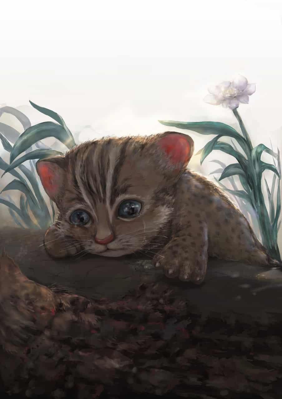 STOP THE ROADKILL, SAVE TAIWAN LEOPARD CAT