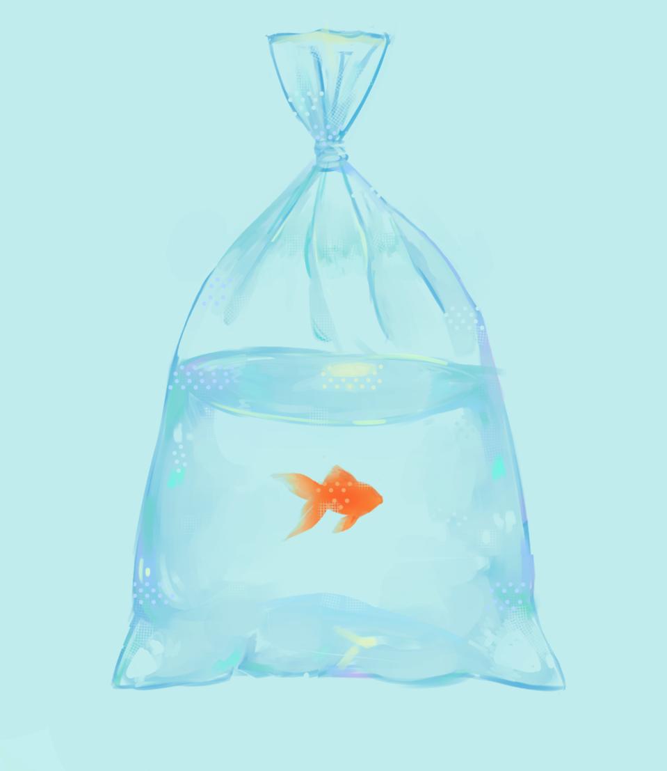 🌸 *taking requests!!!* (read desc) 🌸 Illust of peach requests fish woohoo open