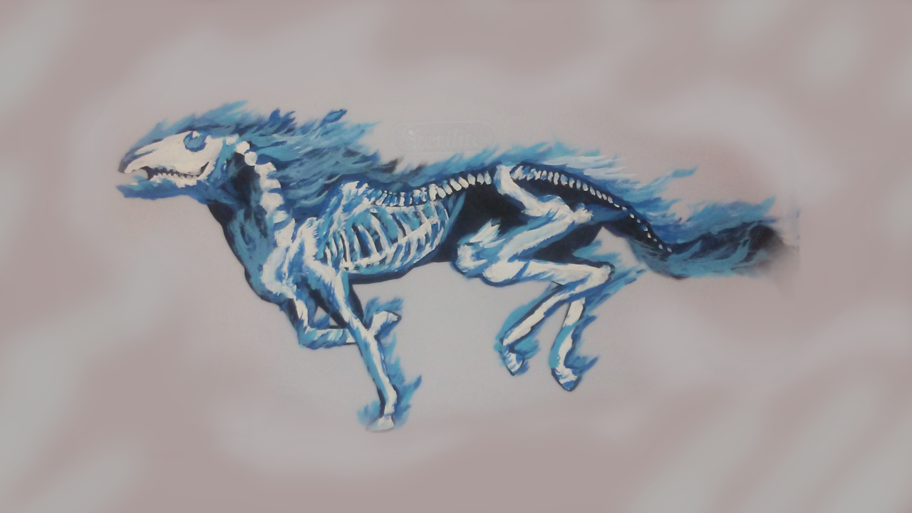 Gorgeous Blue Flamed Skeleton Horse Sweetpsycho97 Illustrations Art Street