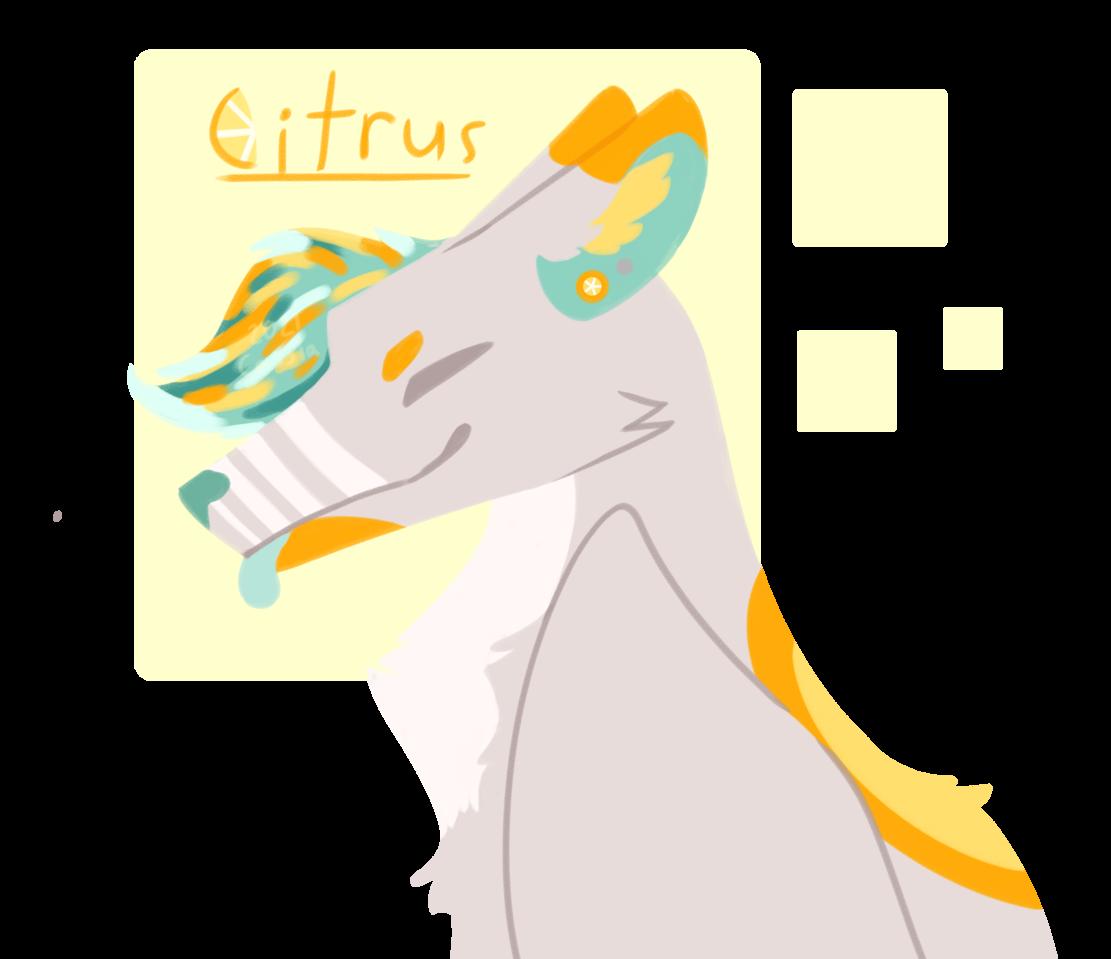 Citrus Illust of Faven oc