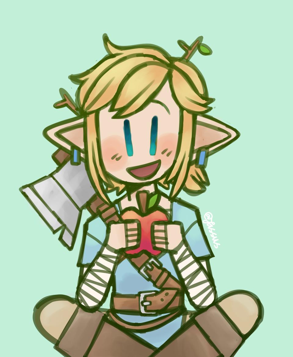 BOTW Link!