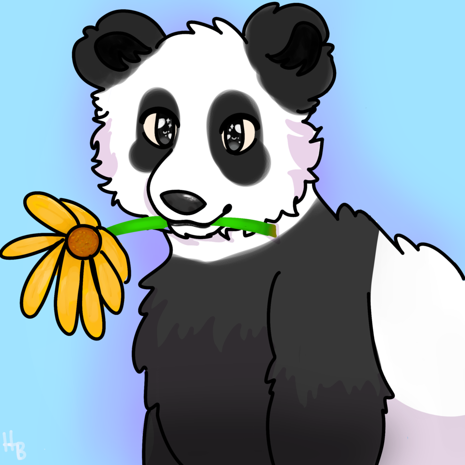 Request #4 for CakesHatesMedi Illust of hxneybun gift request sunflower panda