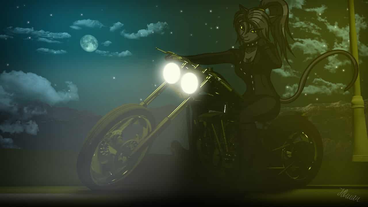 Night Rider Illust of thehereticlocomotive motorc night catgirl