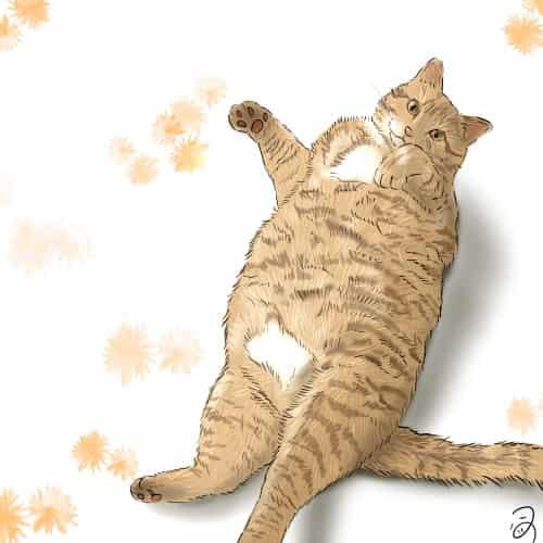 ちゃいろいぽよちゃん Illust of つぅ ARTstreet_Ranking cat 茶トラ