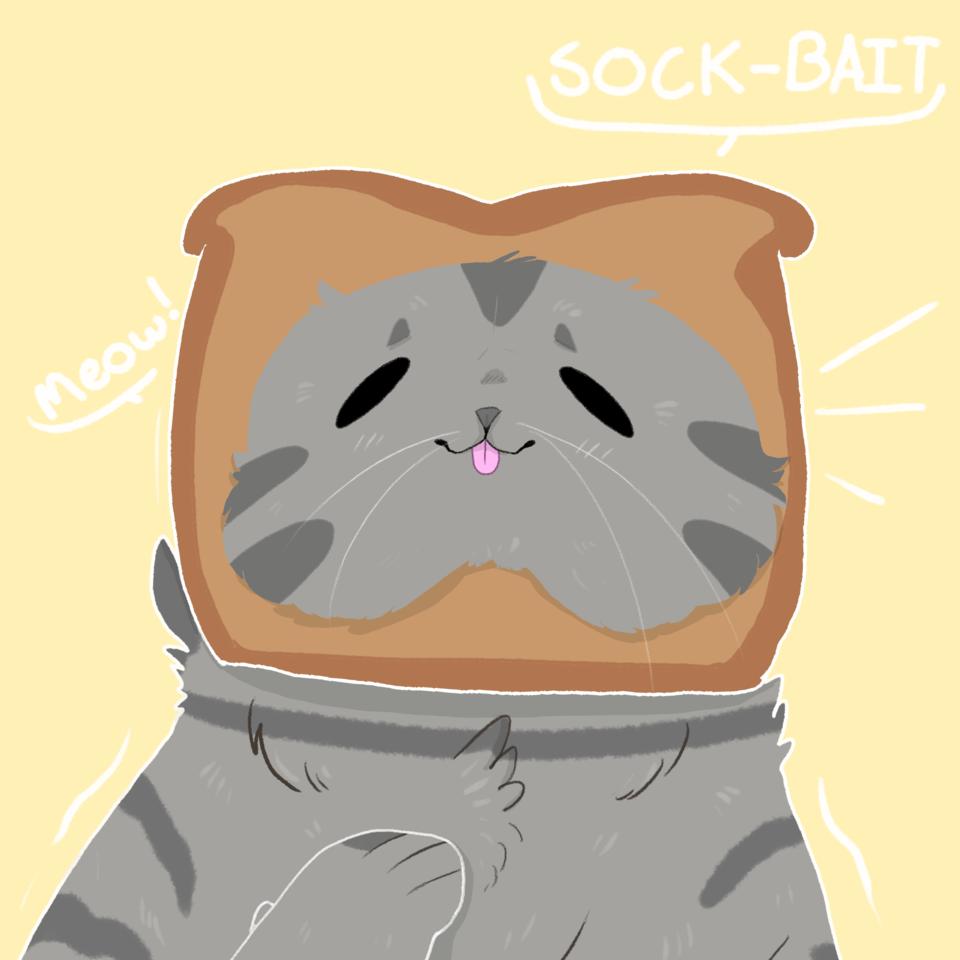 Sock-Bait Entry