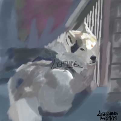 My dog uwu (Finished)