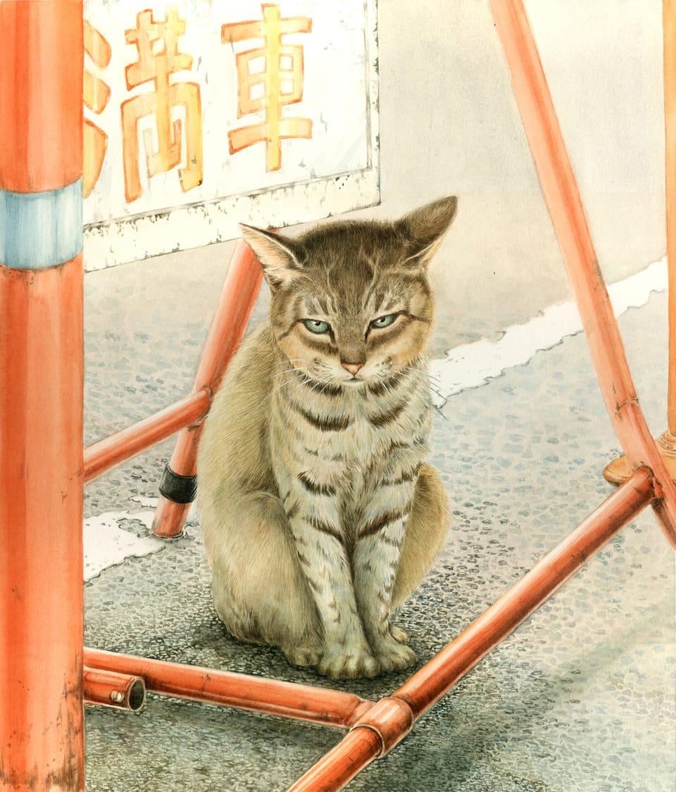 満車猫 Illust of ビ~ン 透明水彩 cat アナログ