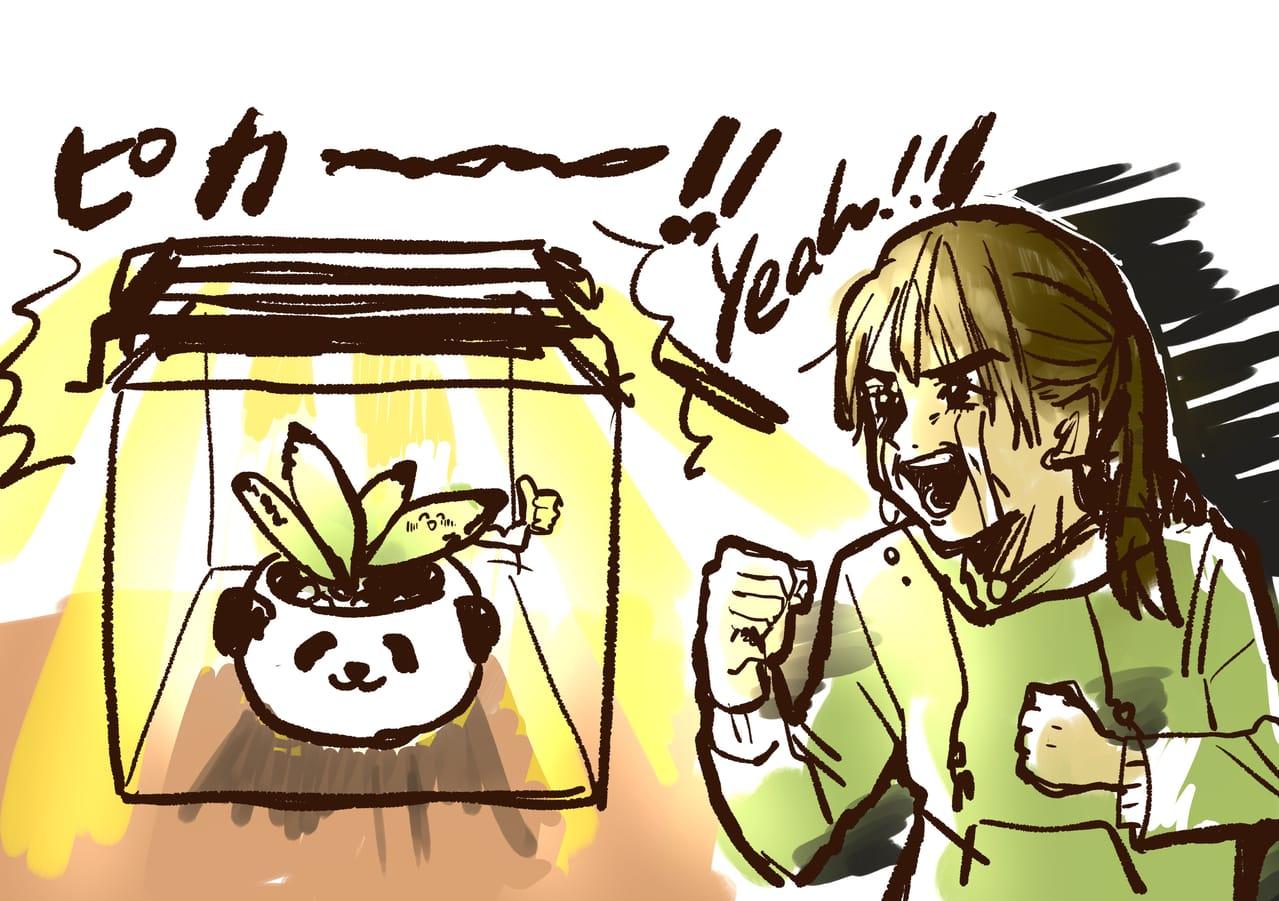 多肉にハマった Illust of 山田ピピちゃん giftyouwant2020 giftyouwant2020:10000YenGift
