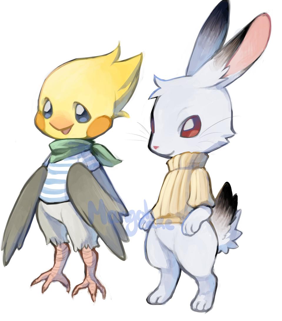 cockatiel and rabbit
