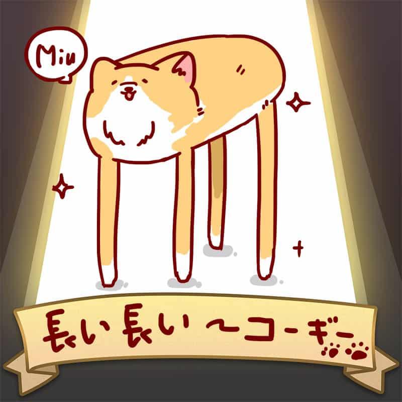 長い長いコーギー Illust of Aries pet dog puppydog corgi original SoBadItsGood コーギー