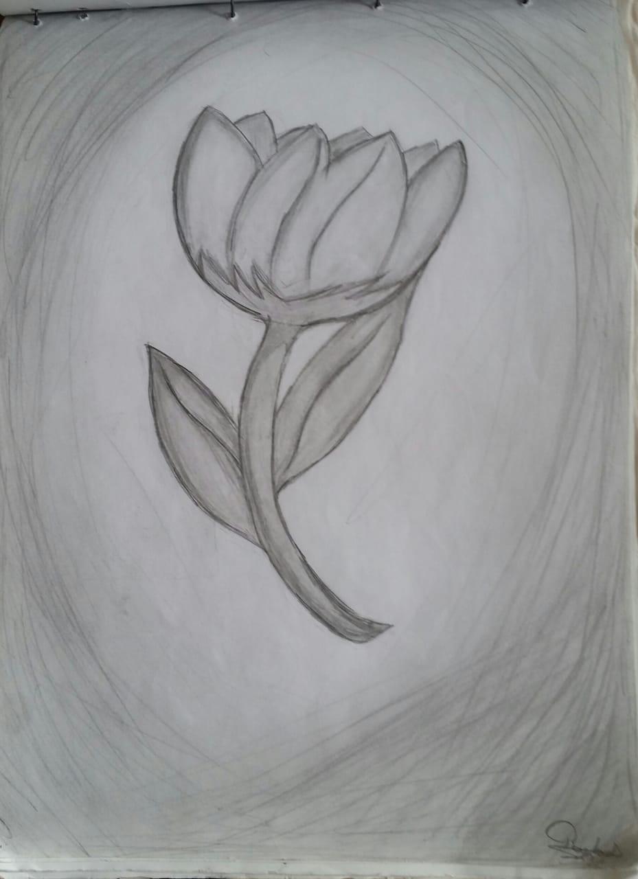 Flower Illust of Ra-chan April2021_Flower May2021_Monochrome monochrome flower gray