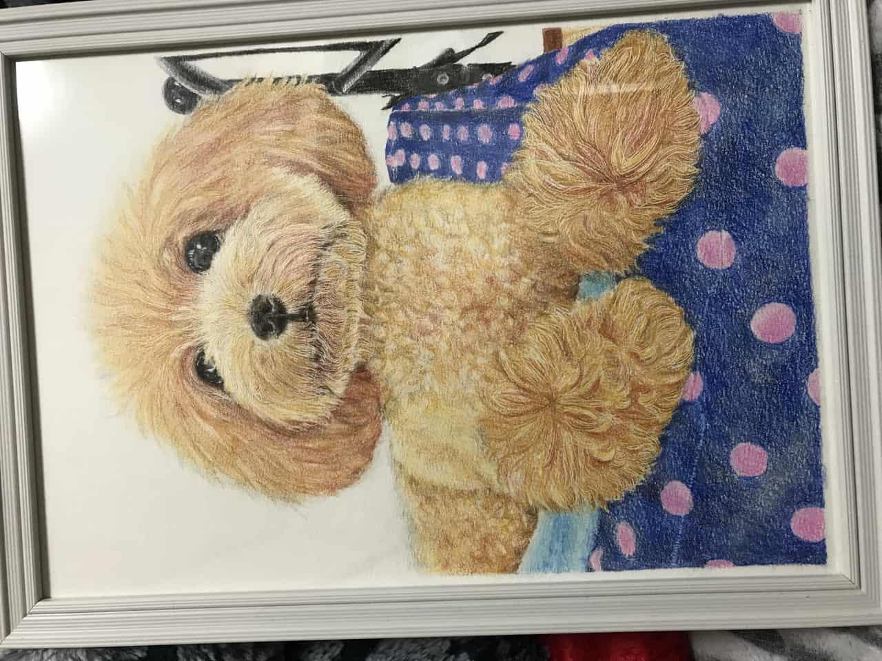 プードル Illust of なっちゃん illustration coloredpencil プードル 色鉛筆絵 dog 色鉛筆画
