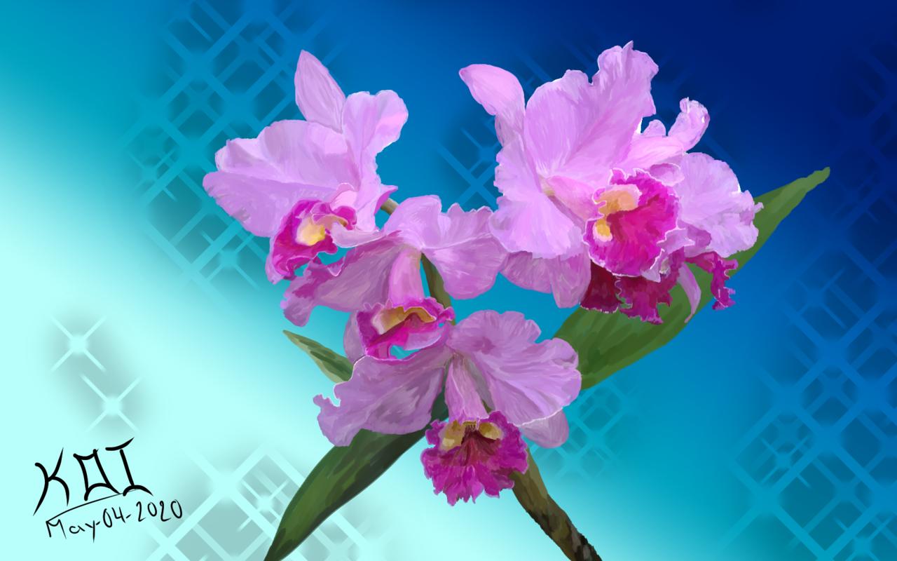 Animales y plantas: El arcoíris de la montaña Illust of KOI April.2020Contest:Color brag.your.country Orquídeas violet morado flores