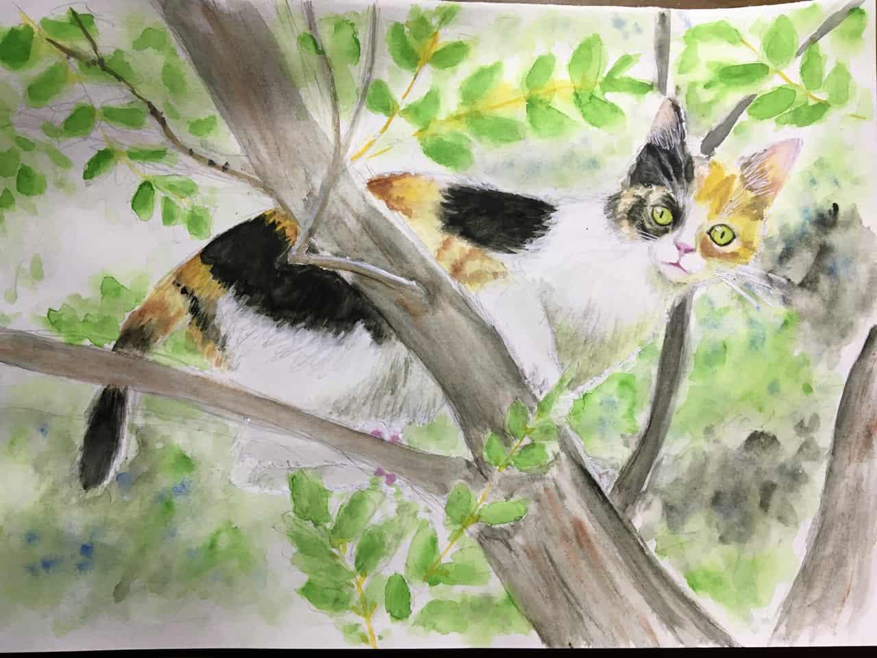 三毛猫 Illust of エインセル cat