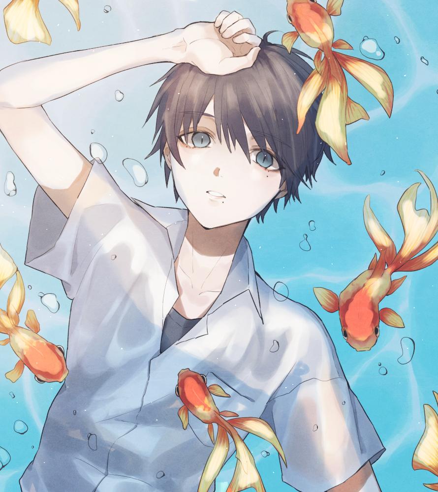 金魚と僕の夏