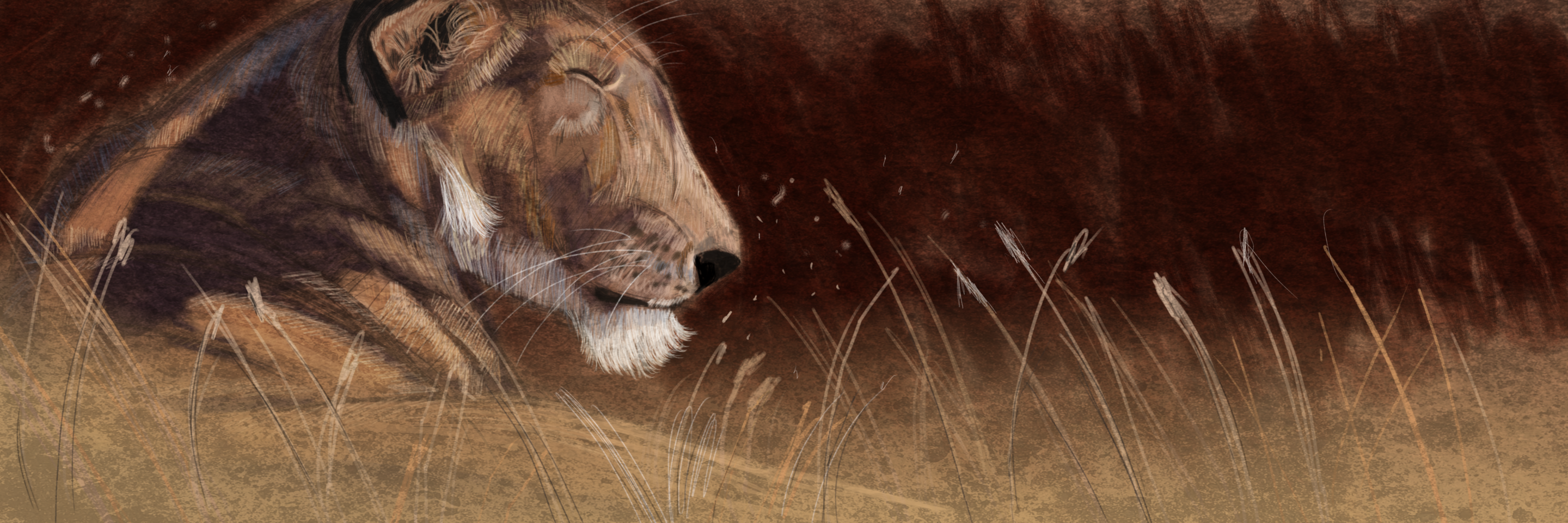 loin painting