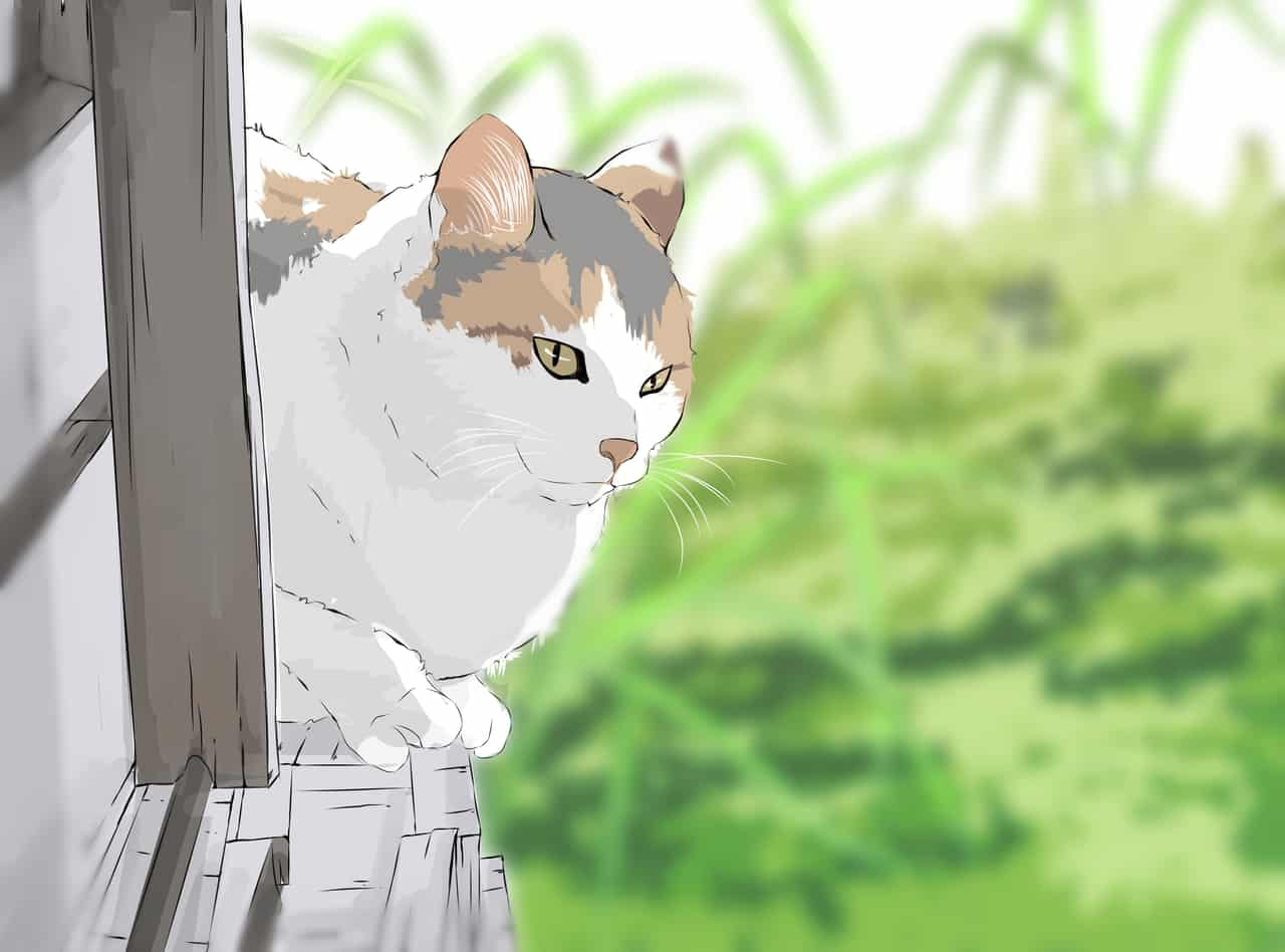 Cat Illust of Kralr September2020_Contest:Furry cat