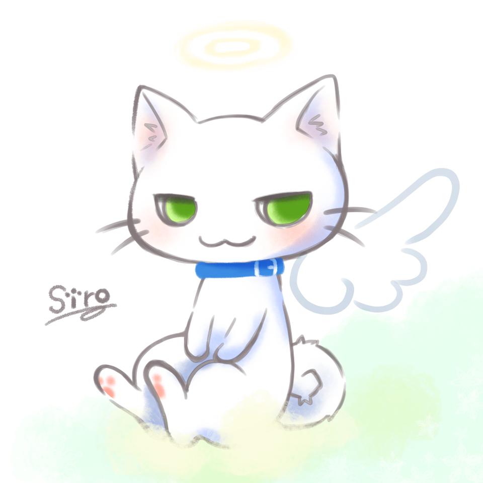 虹の橋を渡った君へ Illust of minmin DOGvsCAT_CAT