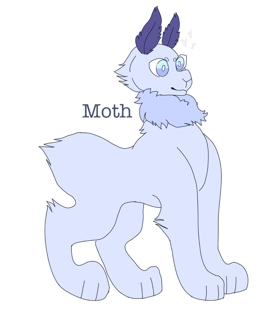 lil bean named Moth from KawaiiPotato245! Illust of Sleepyxx (DEAD ACCOUNT) medibangpaint