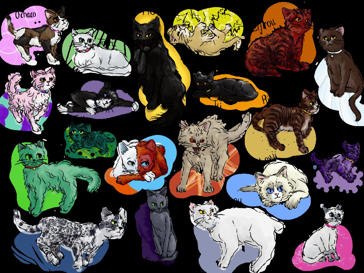 BNHA cats Illust of Calliope medibangpaint kitties cat class1A shoutotodoroki MyHeroAcademia katsukibakugou Izuku_Midoriya