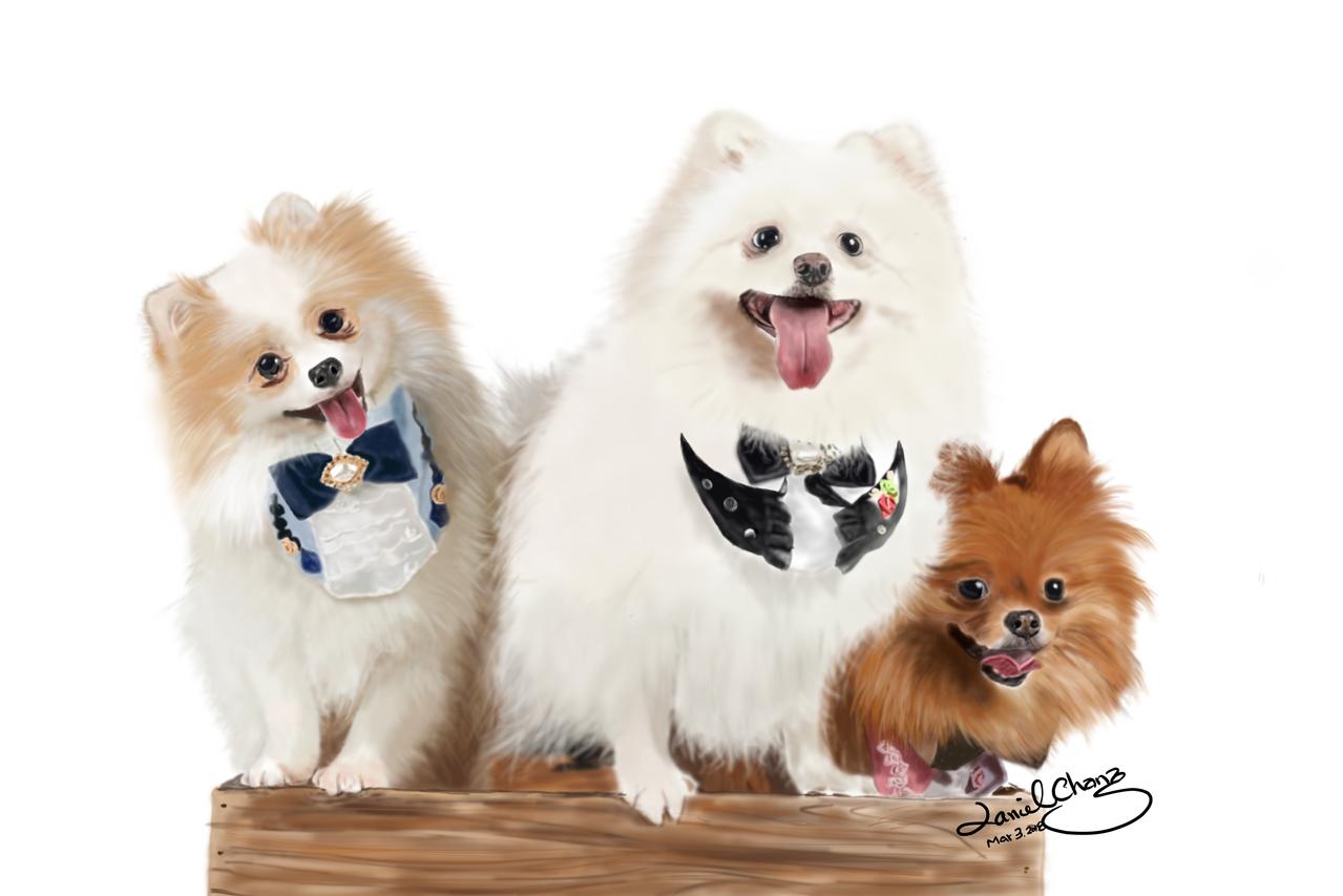 松鼠狗 Illust of smartboy DOGvsCAT_DOG medibangpaint
